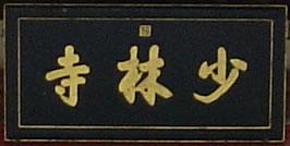 Roots: Shaolin Monastery