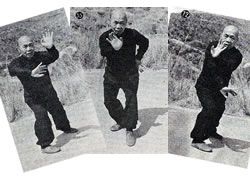 Practical Hung Kyun - Double, Single and Black Tiger Claw