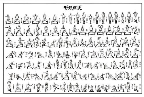 Practical Hung Kyun 5th Kap - Tiger and Crane Double Form Set (Fu Hok Seung Ying Kyun)