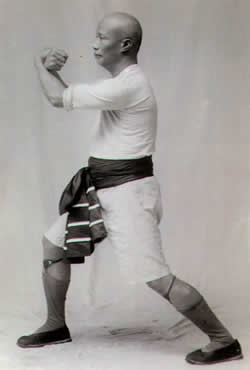 "Grand Master Lam Sai Wing Performing ""Iron Thread Set"" (Tit Sin Kyun)"