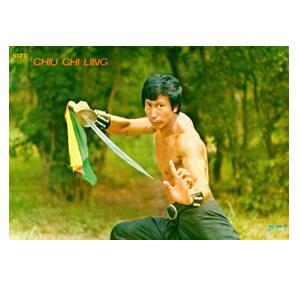 Chiu Chi Ling Pek Gwa Sabre Poster
