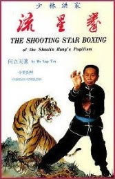 Ho Lap Tin - Shooting Star of Hung Pugilism