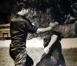 Hung Ga Kyun Grand master Lam Chun Fai