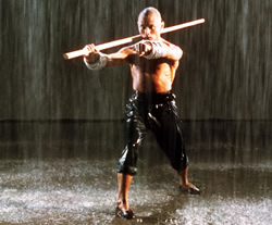Hung Ga kKun in Movies: 36th Chamber of Shaolin