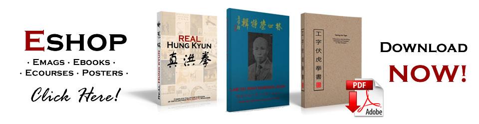 Practical Hung Kyun Eshop