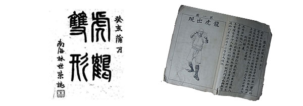 "Hung Ga ""Tiger and Crane Double Form"" Manual: Please Support the Online Translation!"