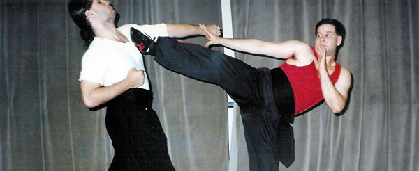 Perspectives on the Role of Practical Fighting in Chinese Martial Arts