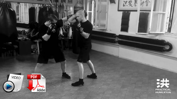 Application Drills, Self-Defense and Free Fighting