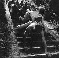 Shaolin Crawling