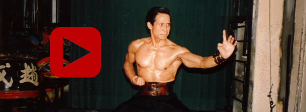 "Hung Gar kuen Video: Grand Master Chiu Wai - ""Double Chain Whip"", ""Ten Forms"", ""Tiger and Crane"""
