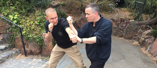 Practical Hung Ga Kyun for Today's World: Interview with Michael Goodwin Sifu [Video]