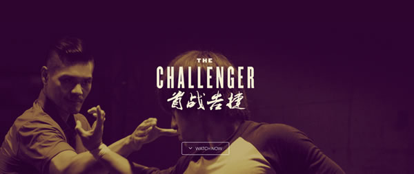 Hung Ga Kyun in the movies: The Challenger