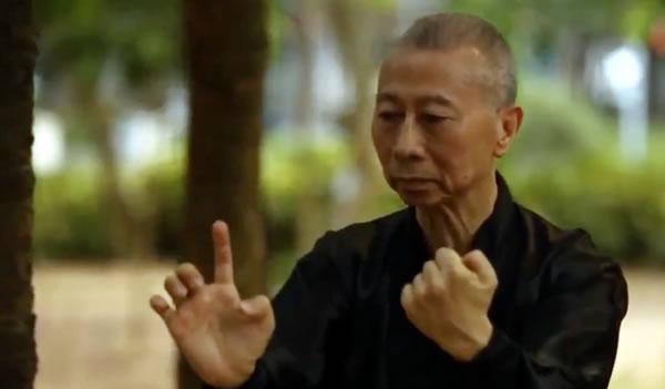 "Announcement from Grand Master Lam Chun Fai: ""Iron Wire Fist"" (Tit Sin Kyun) Book + DVD Project"