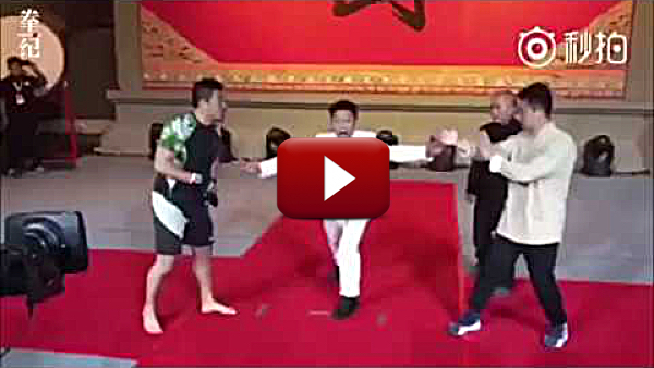 Challenge Match! MMA vs. Wing Chun