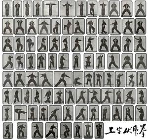 Hung Ga Kyun - Lam Sai Wing's Taming of the Tiger (Gung Ji Fuk Fu)