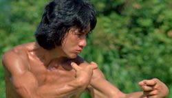 Wong Fei Hung and Drunken Boxing
