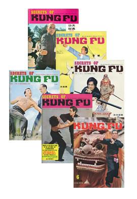 Secrets of Kung Fu