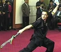 Michael Goodwin Sifu