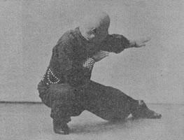 Hung Ga Kyun Kicks