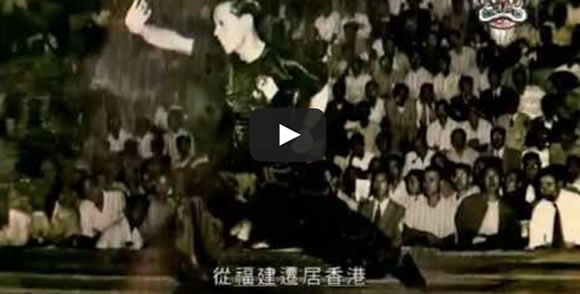 Hung Ga Kyun Video Documentary