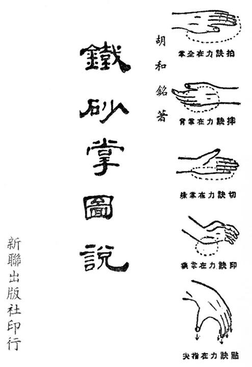 Iron Palm Manual