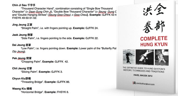 Complete Hung Kyun Book Project