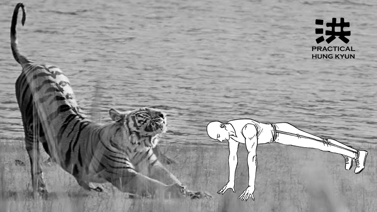 """""""Tiger Claw System's"""" Traditional Nine-Count Fingertip Push-ups"""